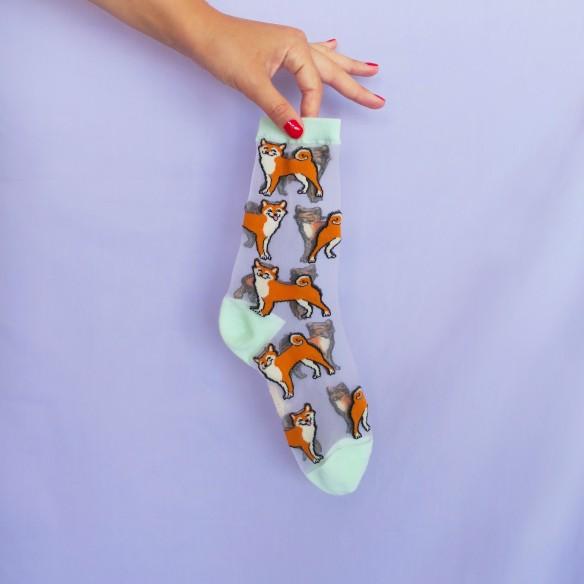 Chaussettes Transparentes Shiba