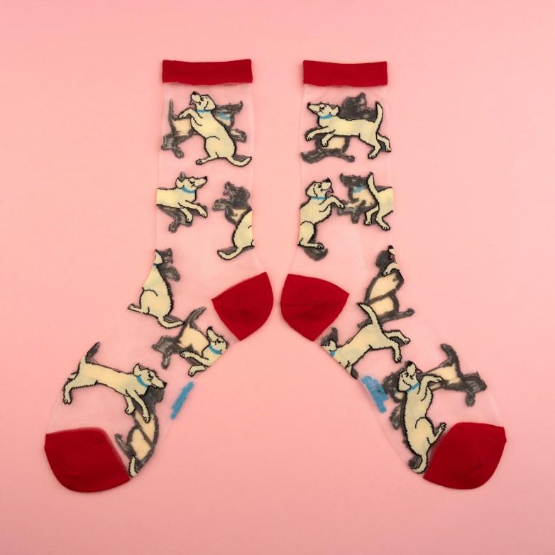 Golden Sheer socks coucou suzette