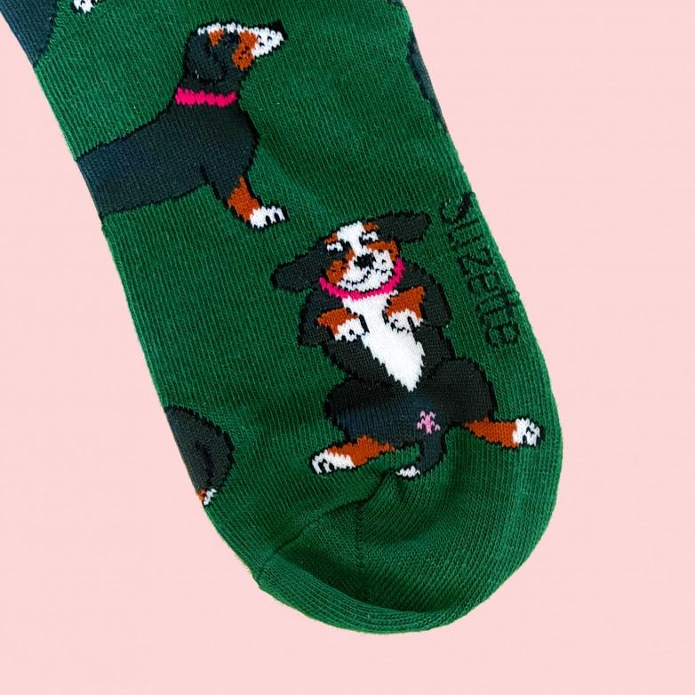 Bernese Socks